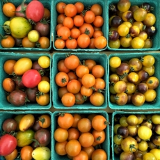 Street Beets August 29th, 2015: Martha's Garden, Gluten Free Bread and Vendor Map
