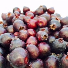 Street Beets July 10th, 2015: Marketus Giganticus, Who Is Back, and New Products