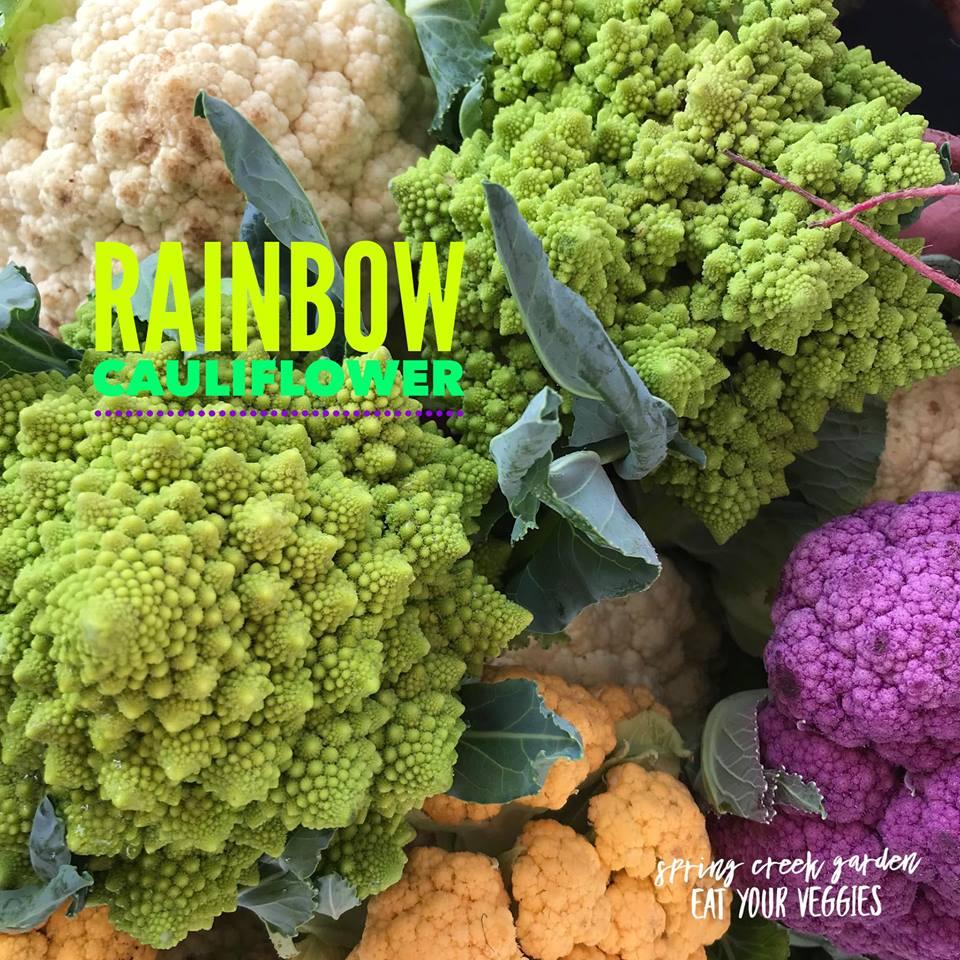 Outdoor Farmers' Market - Image 3