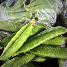 There are few things more exciting than the arrival of fresh garden peas at the market. @springcreekveg will be at their first market of the year tomorrow and they're bringing some of the sweetest and freshest peas around. Trust us, you want to pick up tw