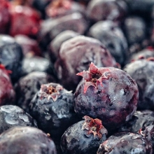 💜💜💜FRESH SASKATOON BERRIES ARE HERE!💜💜💜 « » The season is short and the demand is high for these flavour packed little morsels. Now is the time to head to Regina Farmers' Market to pick up a pint or a pail! « » What will you do with