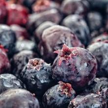 RFM News: July 14 « » Market Highlights: 🥕Lincoln Gardens is back! 🌷New vendor: @larkfarmflowers (beautiful SK cut flowers) 🍦Flok Reward: FREE Prairie Cherry Sundae from @absolutezerosask 😍Fresh Saskatoon Berry season continues! « » Full m
