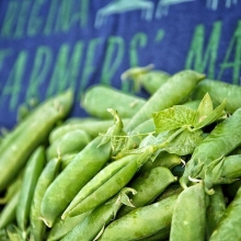 The first peas of 2017 officially hit the Plaza last market (June 24) and we're ready for more! Each year, when pea season arrives, it's like the official start of summer with a promise of great produce to come. It always seems to snowball from there—be