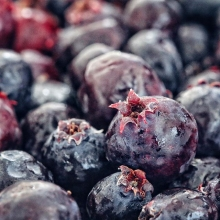 It's that time of year every Saskatchewanian dreams of – saskatoon berry season! Rocky Acres Orchard (@raoledeen) will have fresh berries available by the pint or quart tomorrow. If you really have a craving, you can also buy an entire bucket. « » Loo