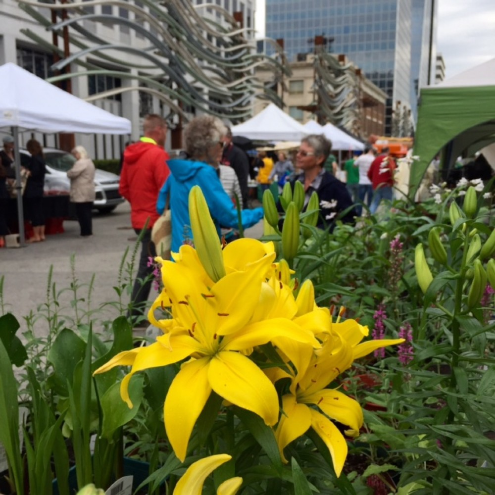 Street Beets June 23rd, 2015: S & S Flowers, Food Trucks, and Vendor Map