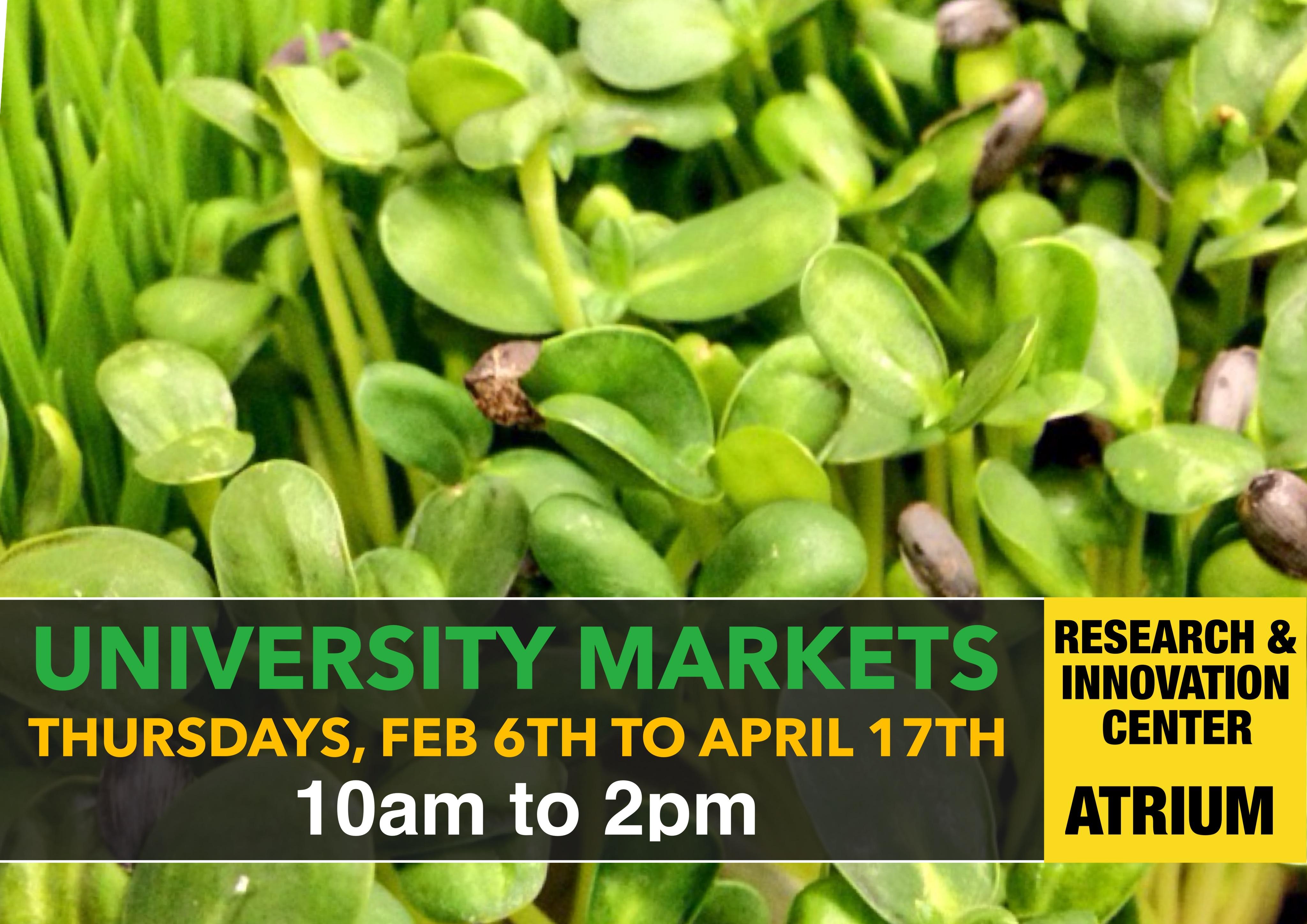 2014 Spring Market Information - Image 1