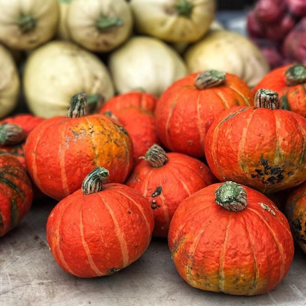Fall Indoor Market Round-up