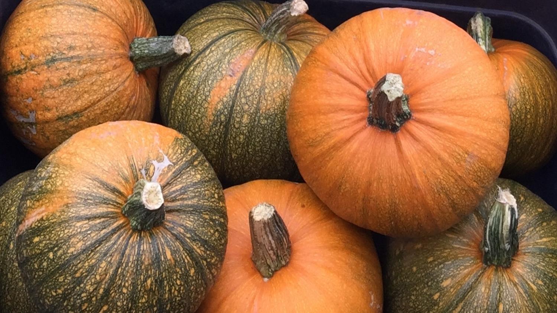 October Markets
