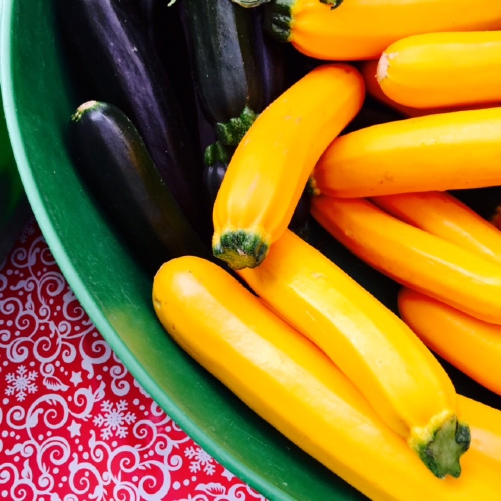Street Beet July 14, 2015: Roasted Nuts, Protein Pizzas, and Zuchinnis