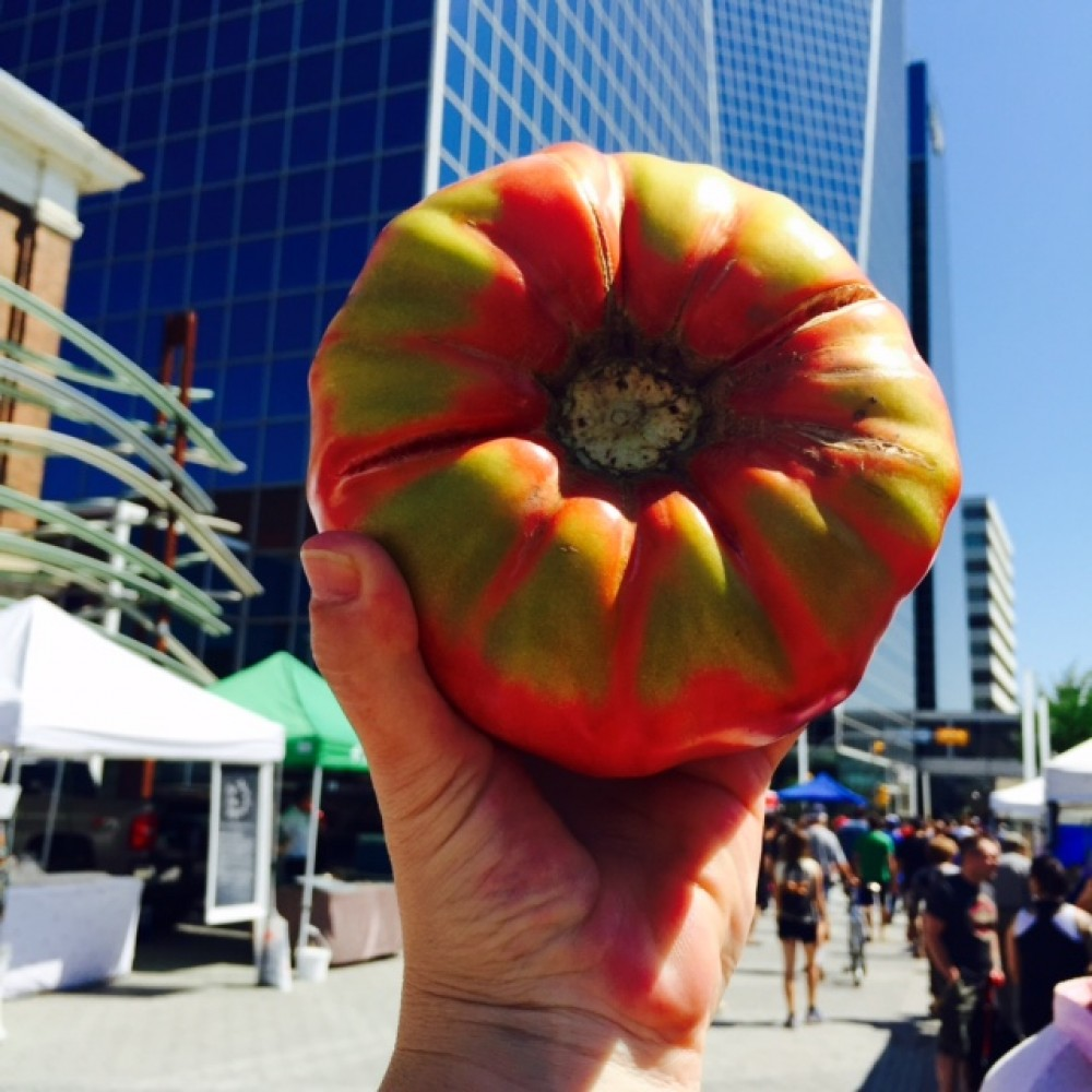 Street Beets July 28th, 2015: Monster Tomato, Map, & Market under the Stars Contest Winner!