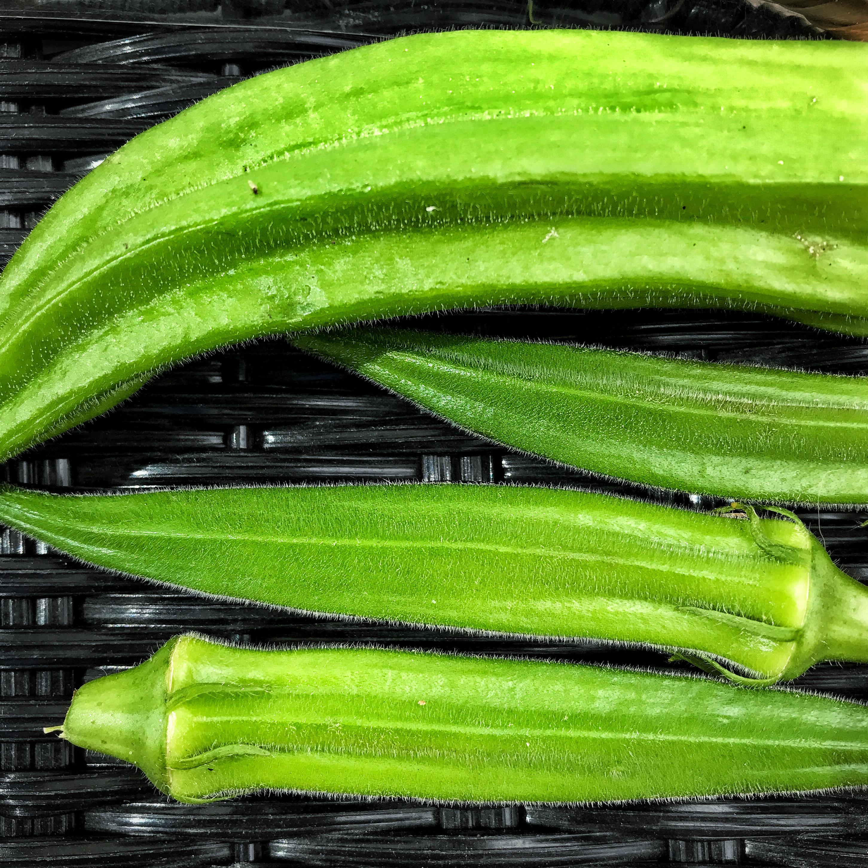 Top 7 Things That Set Regina Farmers' Market Apart - Image 5