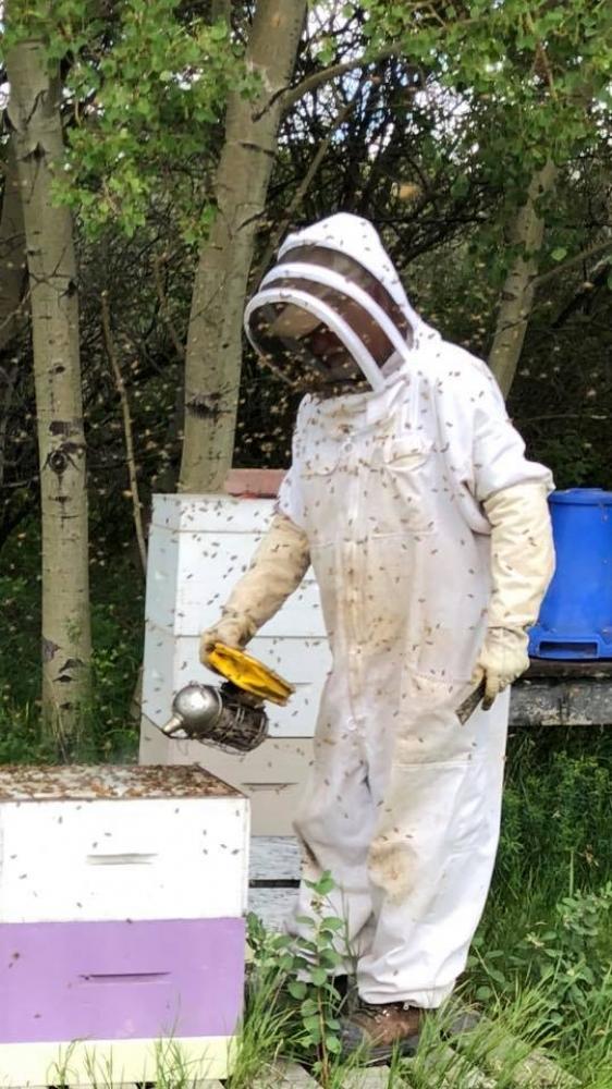 Vendor Spotlight: Zee-Bee Honey