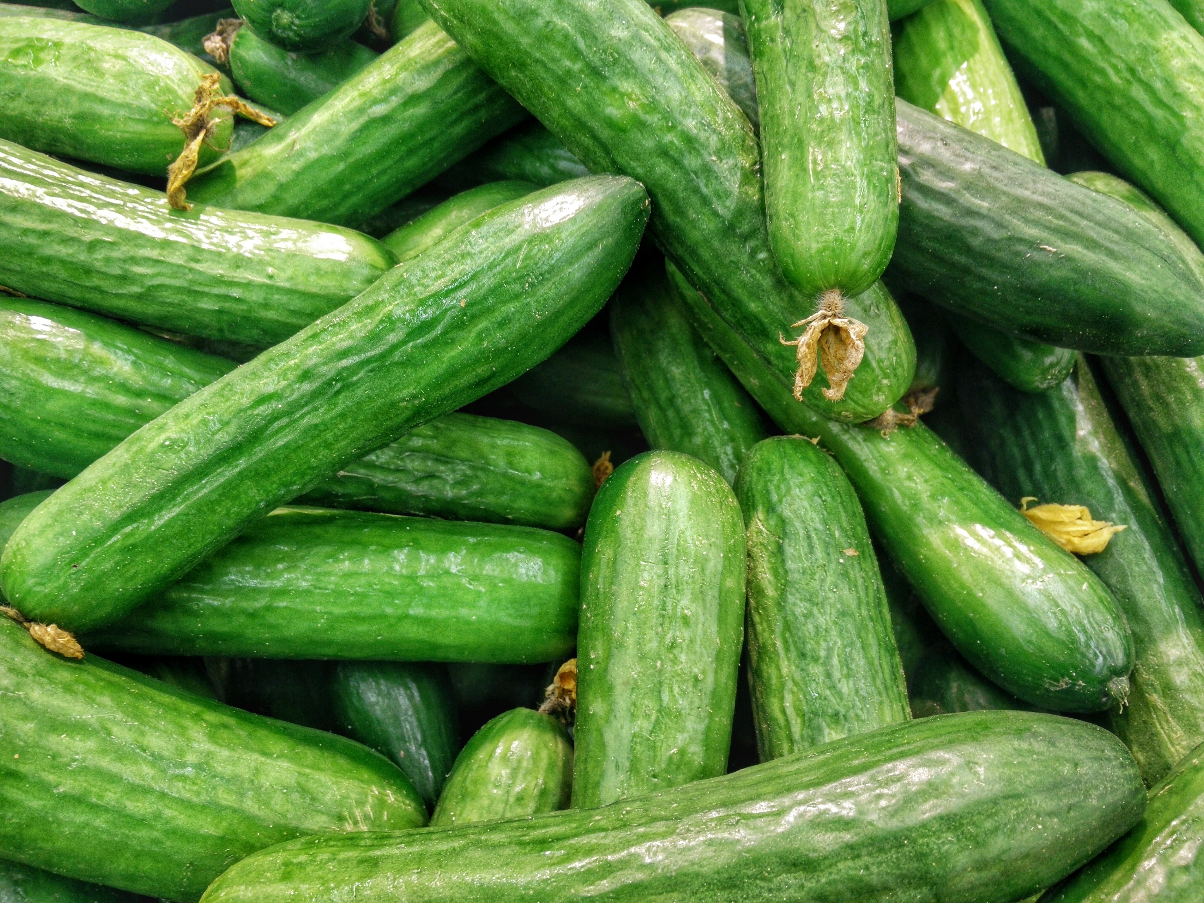 Outdoor Farmers' Market