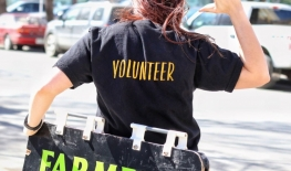 Call for Holiday Night Market Volunteers