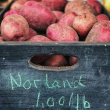 One of the garden's most versatile gifts is the humble potato. Mash them, bake them, french fry them, or cover them with cheese; what's not to love! If you've been collecting #Flok punches then 5lbs of these locally grown beauties can be yours for $0 from