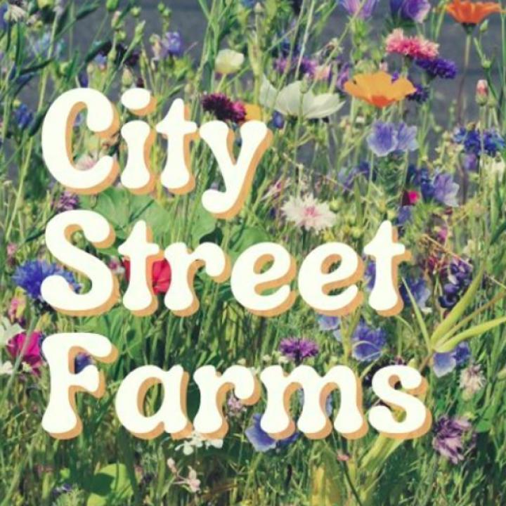 City Street Farms