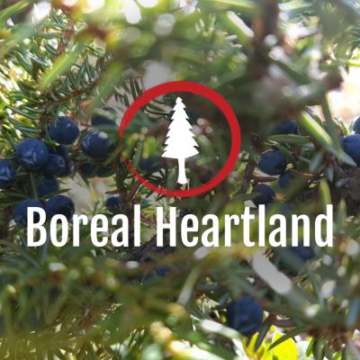 Boreal Heartland